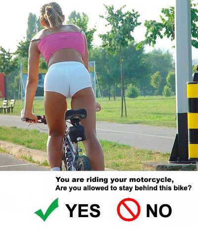 See through Cycling Shorts http://www.fatcyclist.com/2008/09/29/i-am-handily-defeated-by-my-sexism/